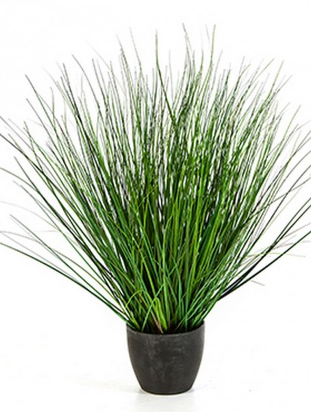 Fountain onion grass - Kunstgras 65 cm