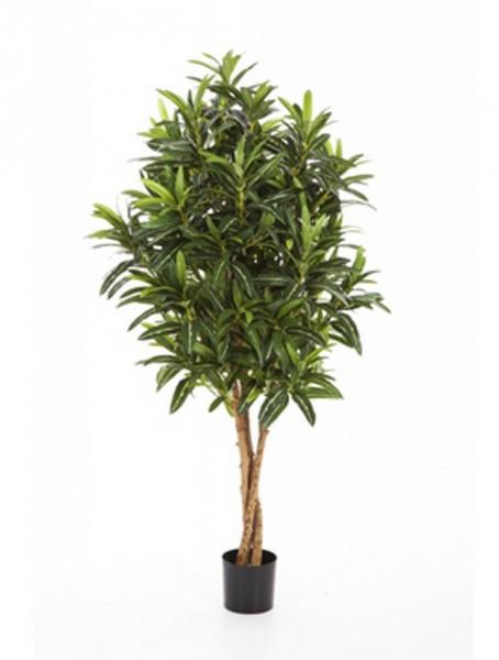 Croton goldfinger - Kunstbaum 125 cm