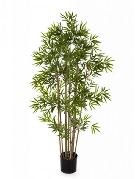 Japanischer Bambus   Kunstbambus