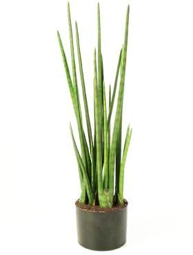 Sansevieria Baton 110 cm | Bogenhanf Kunstpflanze