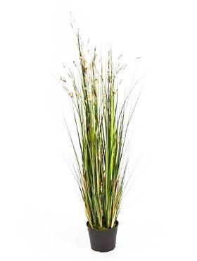 Grass coral cream 120 cm   Kunstgras
