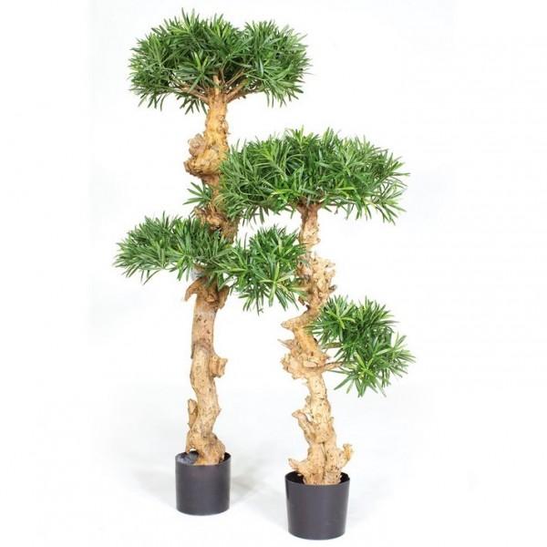 Podocarpus Bonsai - Kunstpflanze