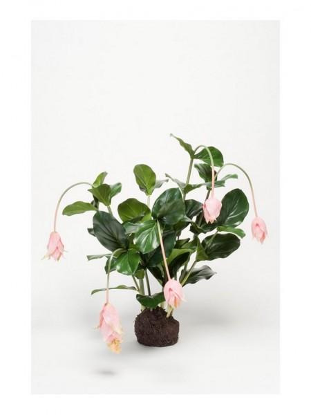 Medinilla pink soiled - Kunstpfanze 75 cm