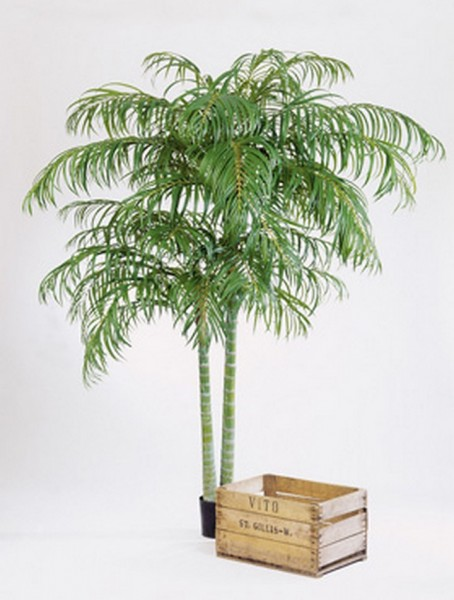 Areca Plame de luxe 210 cm Kunstpflanze