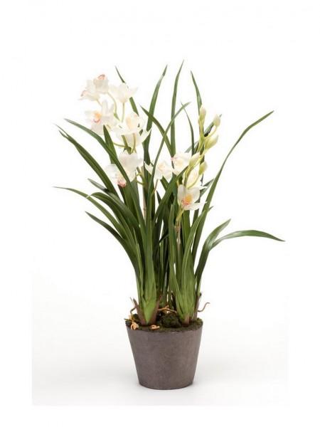 Cymbidium soiled weiß 75cm - Orchideen Kunstblume