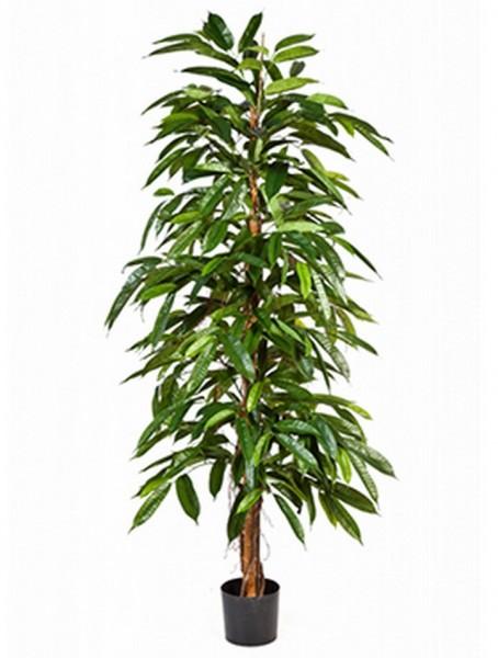 Longifolia tree Kunstpflanze 150 cm
