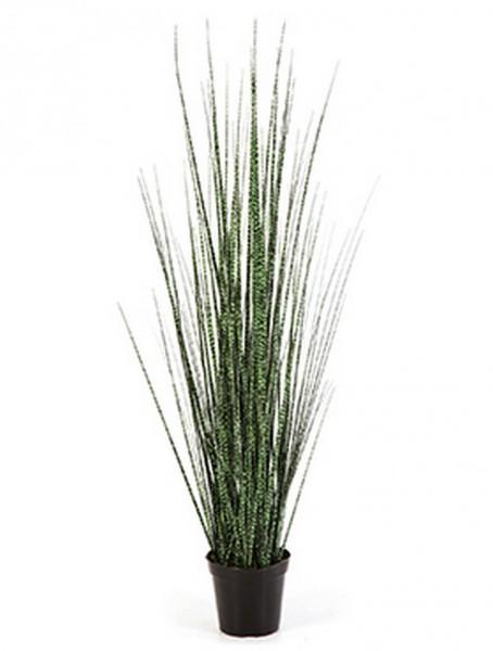 Zebra gracilis grass - Kunstgras 90 cm