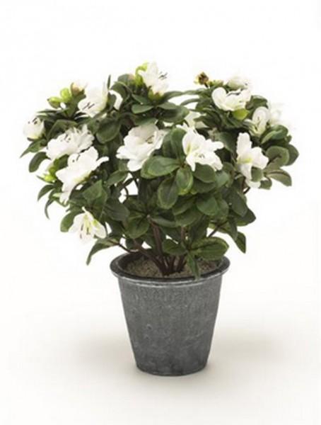 Azalea weiß 12 cm | Kunstpflanze im Topf