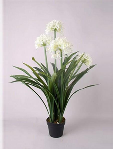 Schmucklilie weiß 100 cm | Agapanthus Kunstpflanze