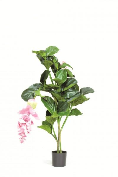 Medinella Deluxe 90 cm | Kunstpflanze