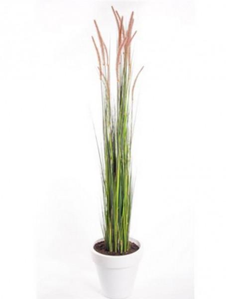 Pennisetum Gras  | Lampenputzergras Kunstgras im Plastiktopf 120 cm