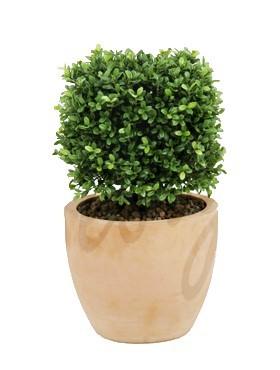 Buxus Quadratisch l Kunstpflanze