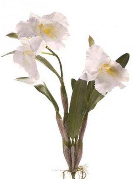 Cattleya weiß 60 cm | Orchideen Kunstpflanze