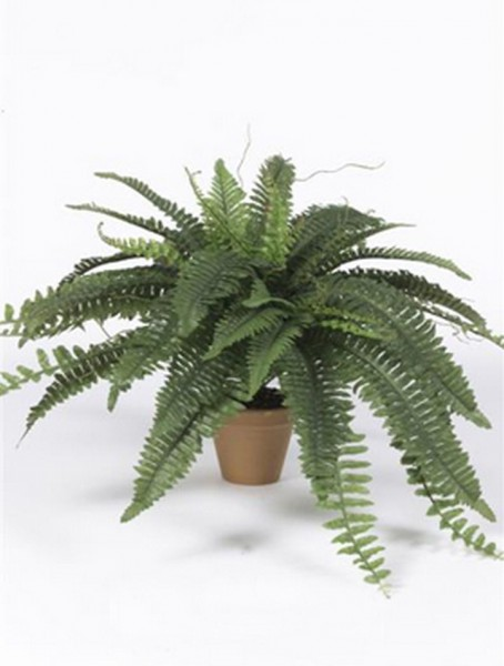 Nephrolepis exaltata Kunstpflanze