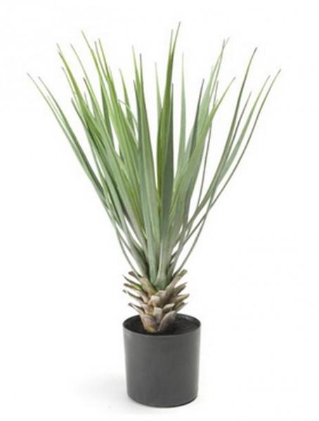 Yucca rostrada 50 cm | Kunstpflanze im Topf