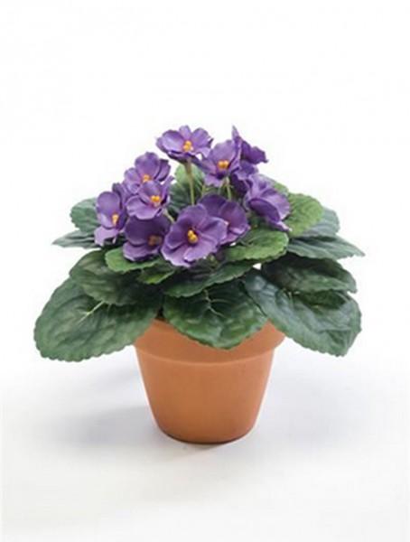 Saintpaulia ionantha violett 11 cm | Usambaraveilchen Kunstpflanze im Topf