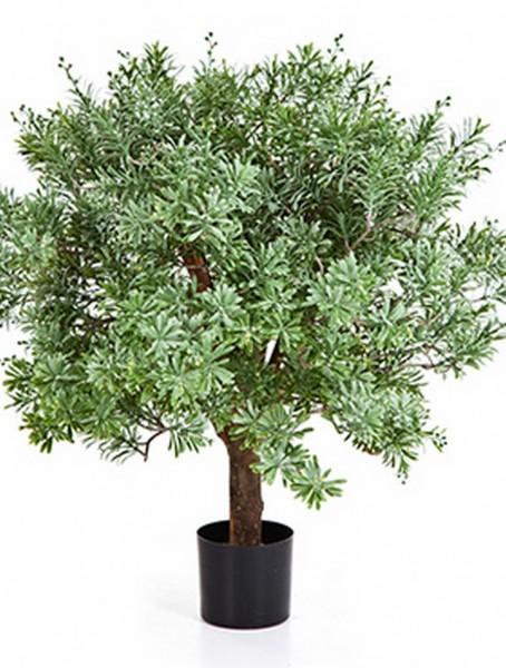 Crossostephium 60 cm - Kunstbaum