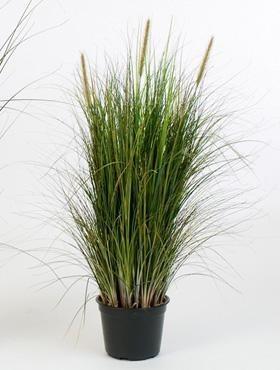 Gras foxtail green - Kunstpflanze