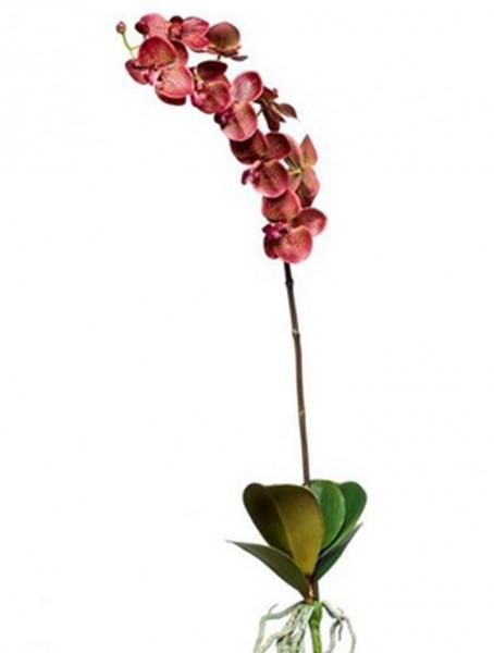 Phalaenopsis 80 cm Zweig | Orchideen Kunstzweig bourgund