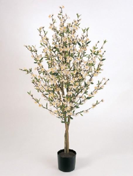 Cherry blossom - Kirschkunstbaum creamweiß 140 cm