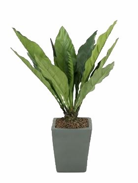 Anthurium jungle king 80 cm | Flamingoblume Kunstpflanze im Topf