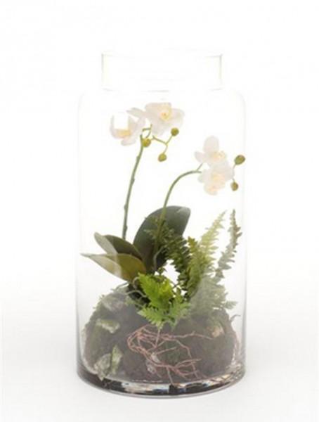 Phalaenopsis Mini Garten weiß 40 cm | Orchideen Kunstpflanze im Glas
