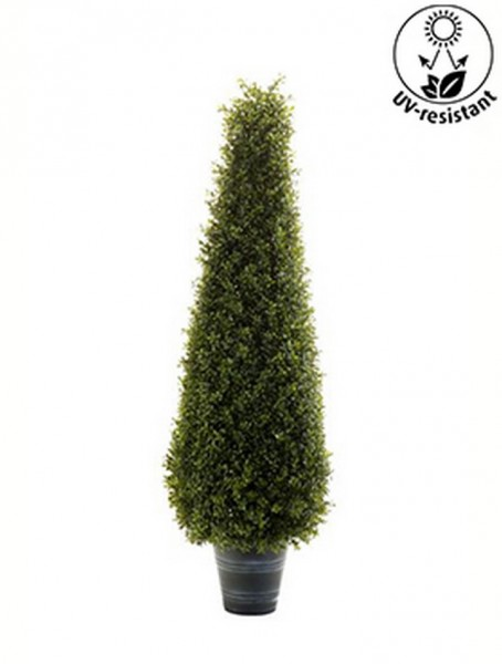 Boxwood Pyramide | Buxus Kunstpflanze im Topf