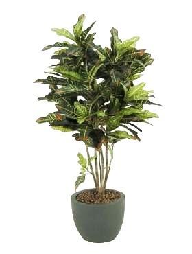 Croton exellent 120cm | Wunderbaum Kunstpflanze