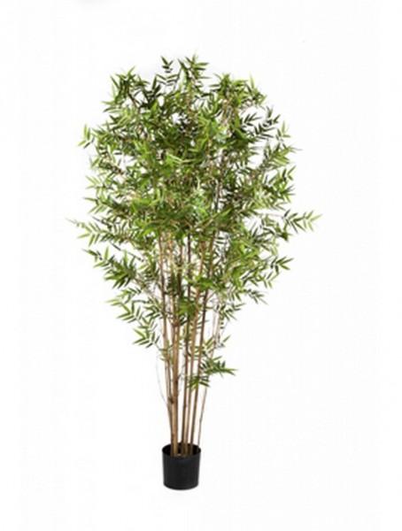 Japanischer Oriental Bambus   Kunstbambus