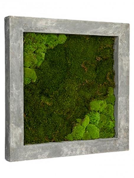 Rahmen aus Polystone grey mit mumifiziertem Moos