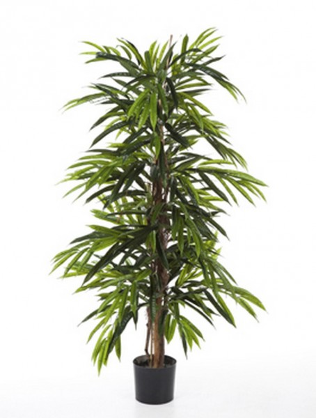Longifolia De Luxe Kunstbaum 150 cm