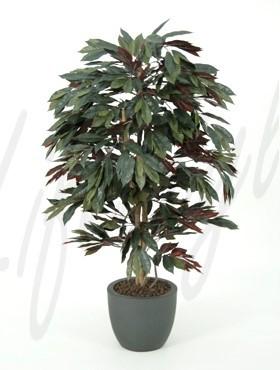Capensia 150 cm - Kunstpflanze Roter Ficus