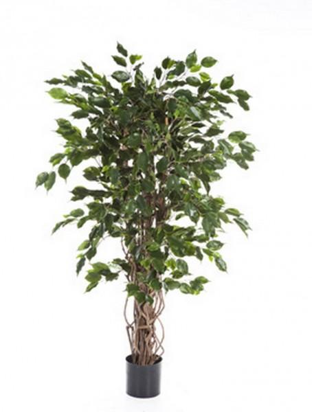 Ficus liane exotica | Kunstbaum