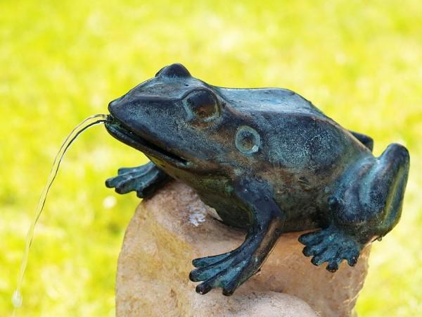 Wasserspaier-Frosch-Bronzefigur