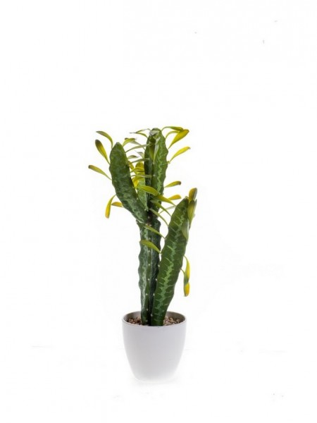 Kaktus euphorbia 54 cm - Kunstpflanzen