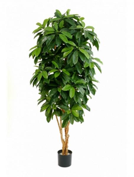 Lady schefflera - Kunstbaum 140 cm