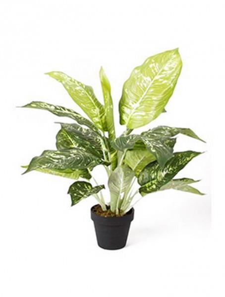 Dieffenbachia 50 cm | Kunstpflanze im Topf