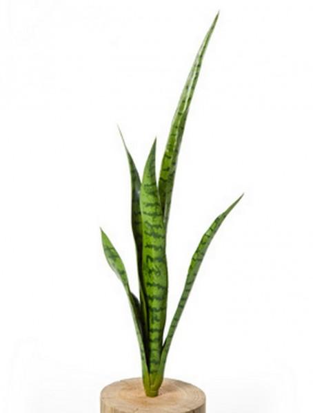 Sansevieria green 80 cm | künstlicher Bogenhanf