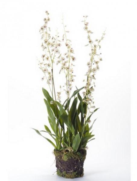 Dancing orchid 90 cm   Oncidium Kunstpflanze weiß