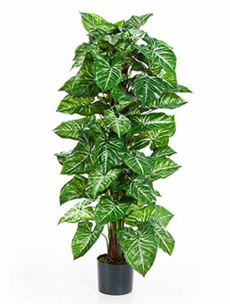 Nepthytis Kunstpflanze 120 cm