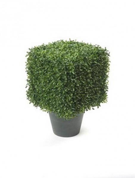 Boxwood Sqaure 30 cm eckiger künstlicher Buchsbaum