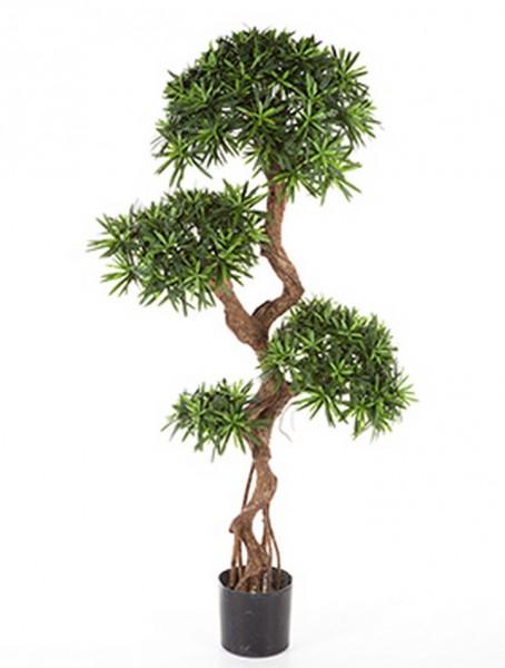 Podocarpus crazy trunk - Kunstbaum 135 cm