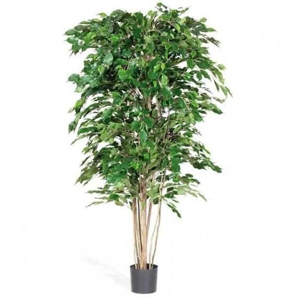 Ficus Exotica Deluxe 180 cm   Kunstbaum