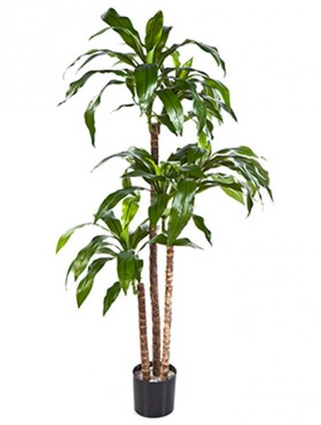 Dracaena fragrans 120 cm - Drachenbaum Kunstpflanze