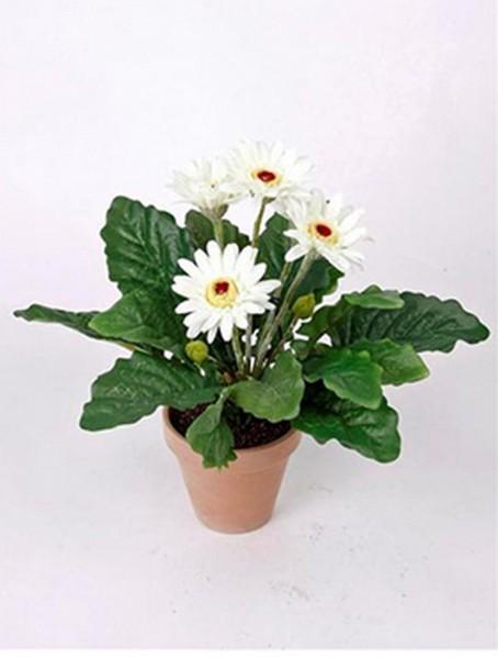 Gerbera weiß 11 cm | Kunstpflanze im Topf