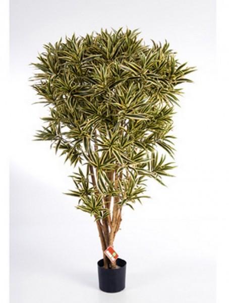Dracaena reflexa india 145 cm - Kunstbaum