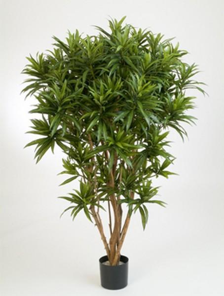 Dracaena reflexa jamaica 150 cm - Drachenbaum Kunstpflanze