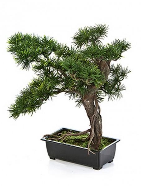Pinus Bonsai Kunstbäumchen 38 cm