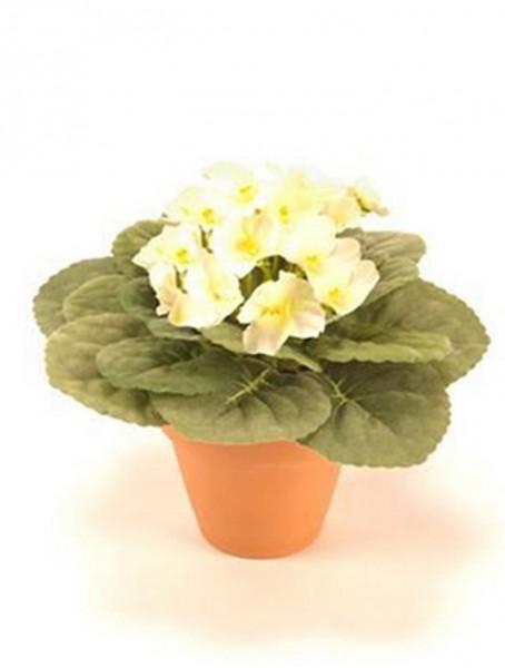 Saintpaulia ionantha weiß 11 cm | Usambaraveilchen Kunstpflanze im Körbchen