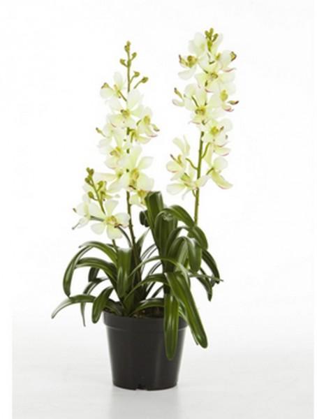 Vanda weiß 64 cm | Orchideen Kunstpflanze